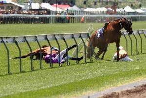 horse_crash3